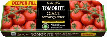 Levington Tomorite Giant Planter