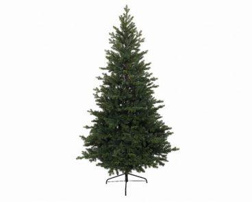 Green Oxford Pine Tree 180cm