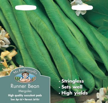 SEEDS – RUNNER BEAN – MERGOLES