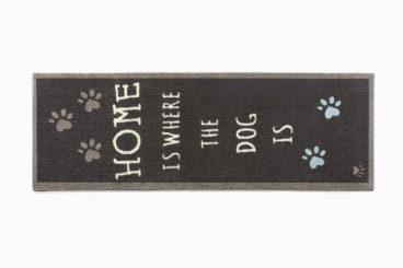 Howler & Scratch  Runner – Home 2