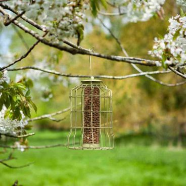 mica2/21 BIRD FEEDER SQUIRREL PROOF PEANUT