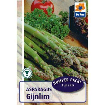 Aparagus – Gijnlim